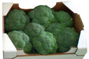 Sirtaki broccoli