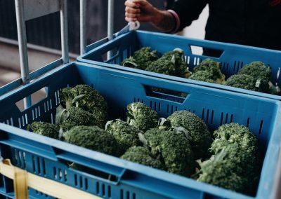 kwaliteits broccoli